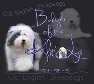 Bobtails of the Klit-Ly's