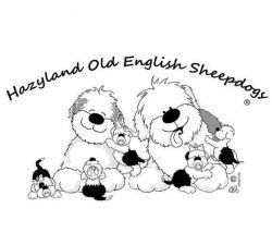 Hazyland