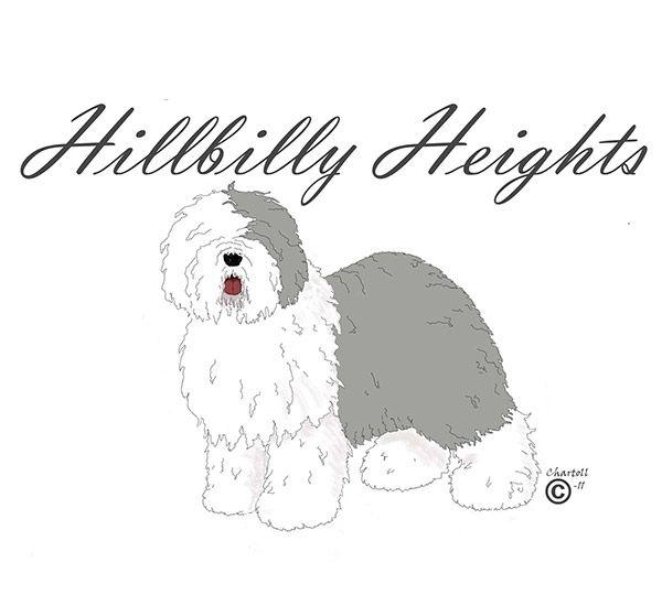 Hillbilly Heights