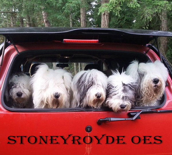 Stoneyroyde